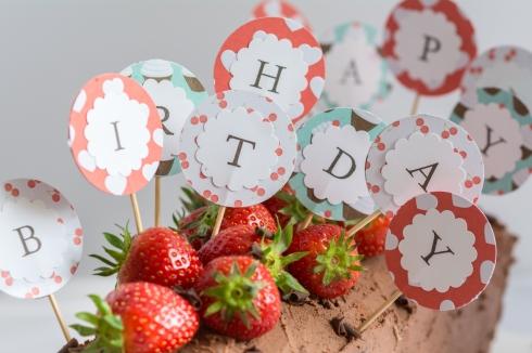 Schoko-Erdbeer-Kasten_2