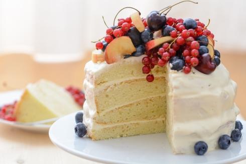 Schmand-Früchte-Torte_3